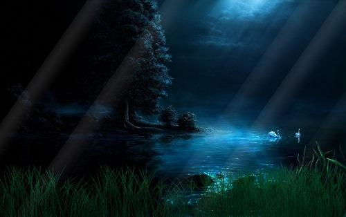 Анімаційна шпалера - Лебедина ніч