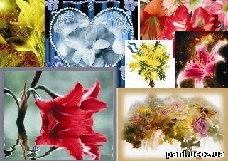 Анімаційні картинки з квітами