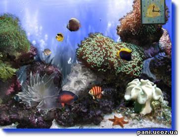 Анімаційні шпалери &;підводний світ
