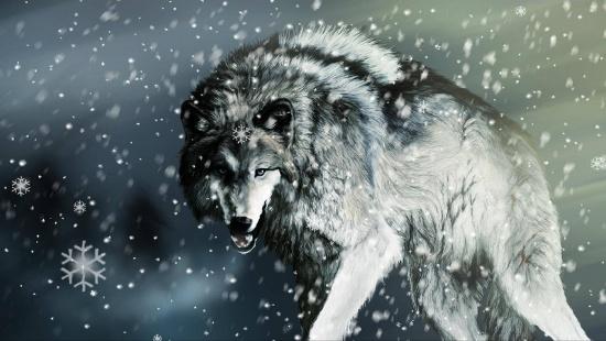 Вовк і сніг заставка на рабочий стол